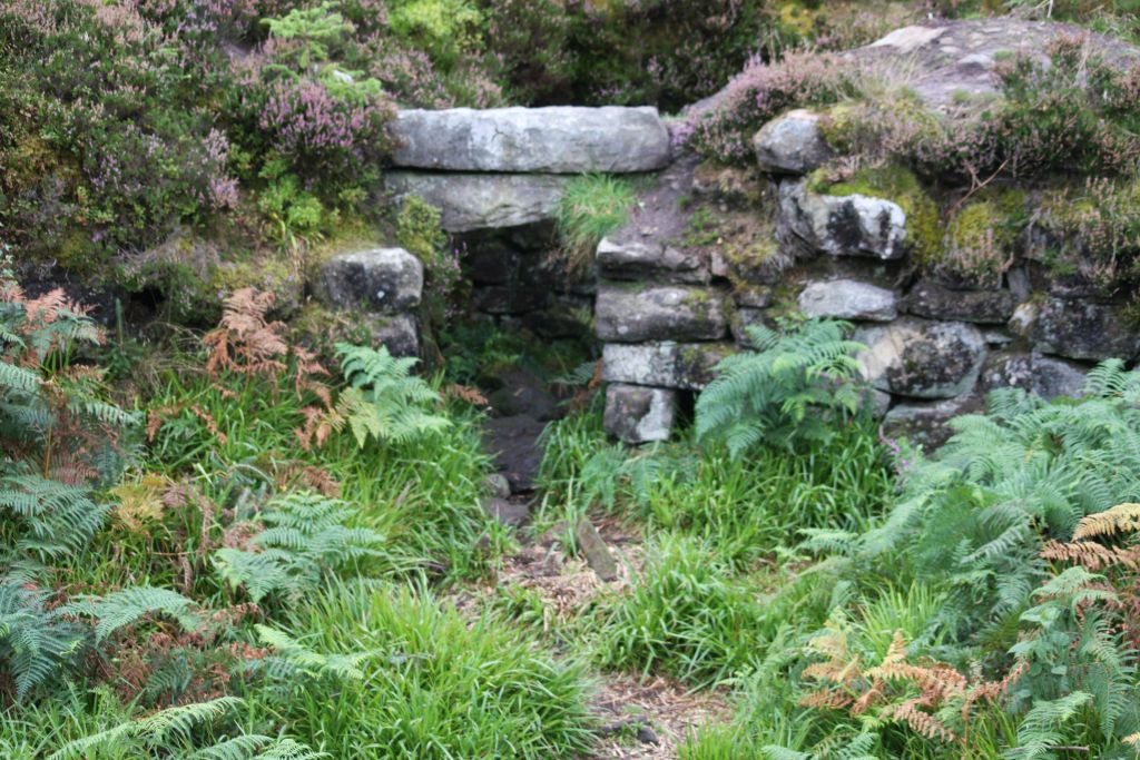 stone archway overgrown with heather and fern
