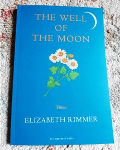 cover of book, teal blue, with feverfew and crescent moon