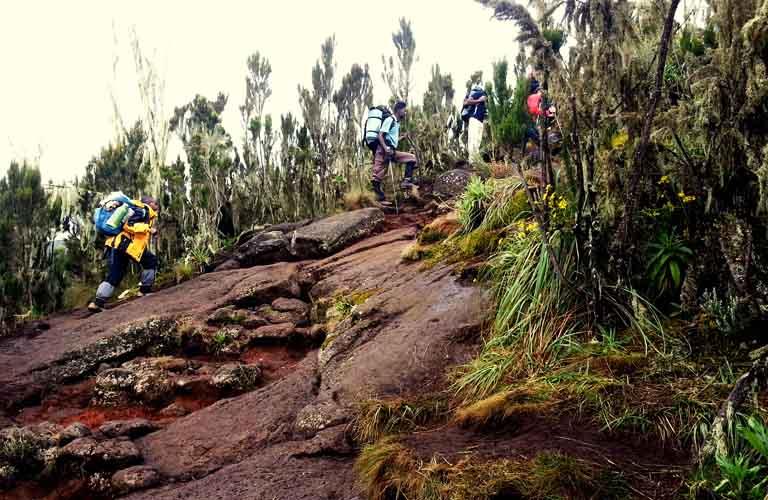 Mount Kilimanjaro Porter (Träger) Machame Route