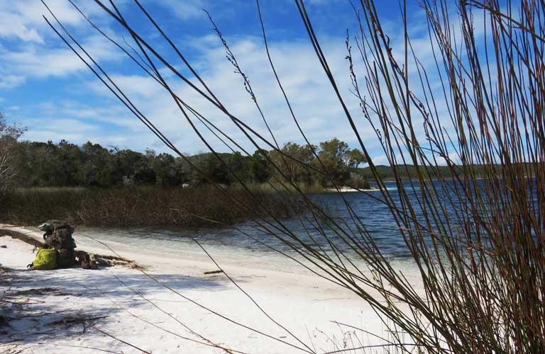 Lake McKenzie Fraser Island Tour Backpacking