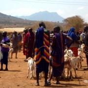 Massaimarkt Mgagao Tansania Moshi Massai