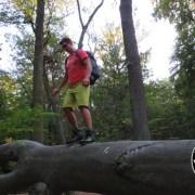 Test Trekkingschuh Scarpa Marmolada Trek OD