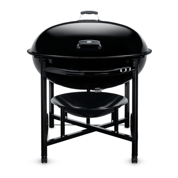 Best Extra Large Weber Grill