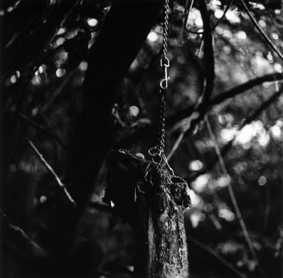 21__Suspended__triptych_center_panel_Tragedy_in_woods_Cincinnati_Ohio_2003