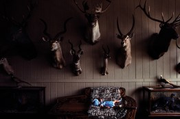 03._Taxidermy_Shop__Texas__1988