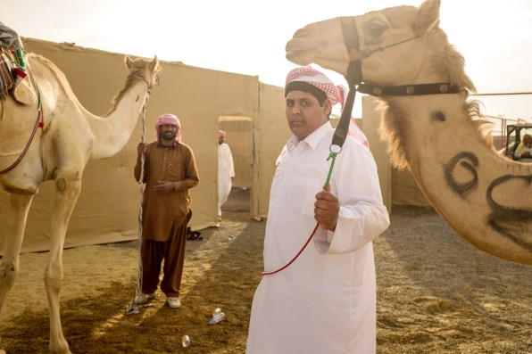 A camel handler and his winning camel at the Al Wathba track in Abu Dhabi.