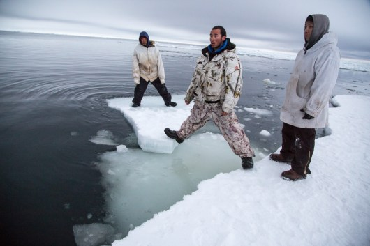 Aaron spots beluga coming. This ice is too thin to land bowhead on, but will support beluga. Tikigaq.