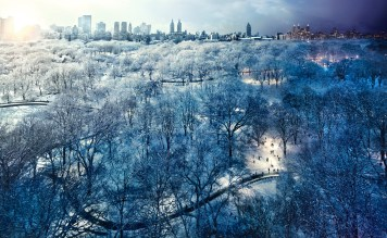 Central Park Snow, NYC, Day to Night, 2010