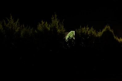 16_Oskar Alvarado_Where Fireflies Unfold