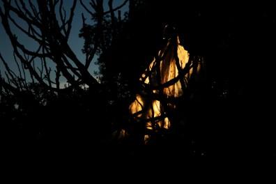 47_Oskar Alvarado_Where Fireflies Unfold