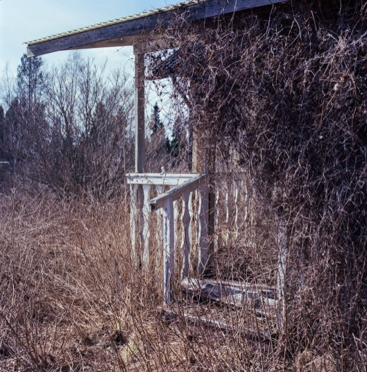 The deserted gazebo of the secret kisses.