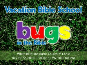 2015 VBS Bug's Life Promo