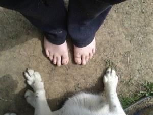 Barefoot at BAR