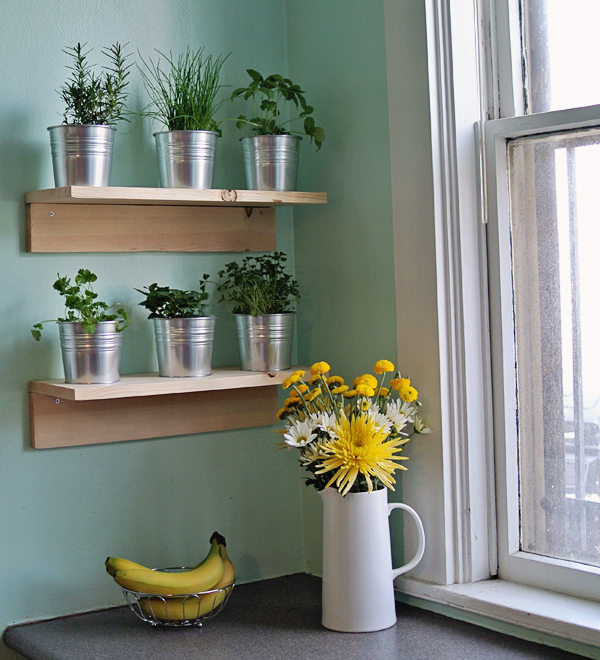 how to make a simple kitchen herb garden | by Burritos & Bubbly