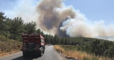 2 günde, 17 ilde 58 orman yangını: 7 ilde 20 yangın sürüyor!