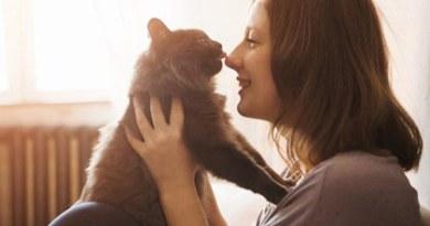 Artık kedilerinizin mutlu olup olmadığını anlayabileceksiniz