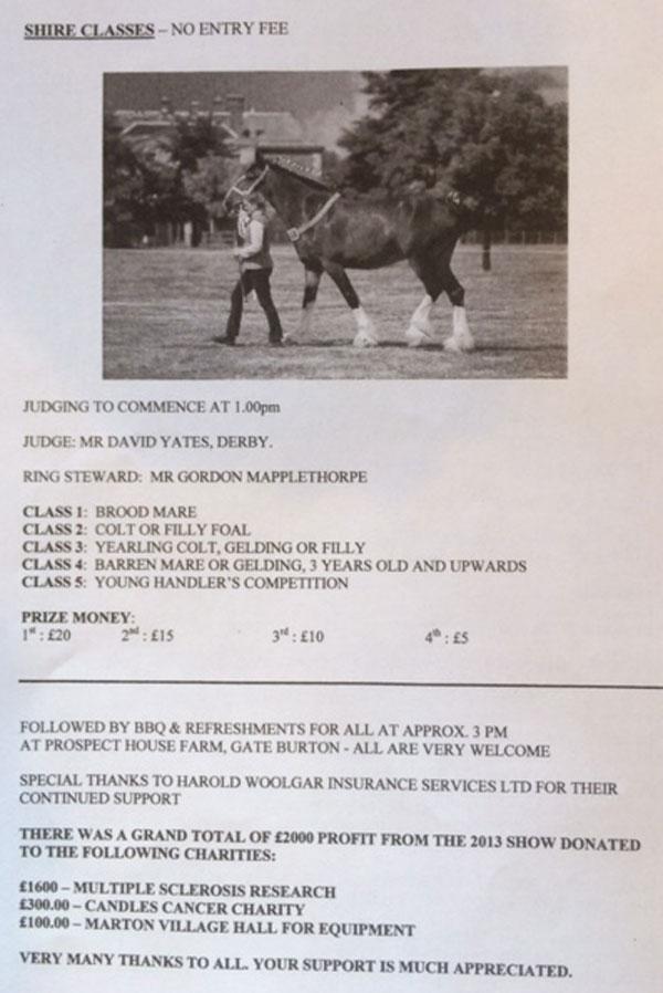 GB-HorseShow2