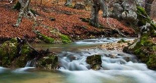 Izki en otoño