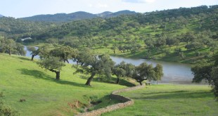 Sierra de Aracena