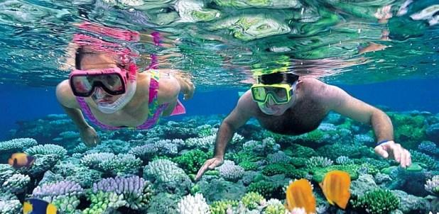 Qué hacer en las islas Cíes