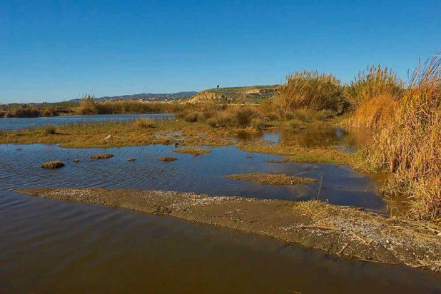 Delta del río Vélez