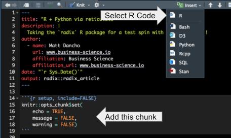 R Code Chunk