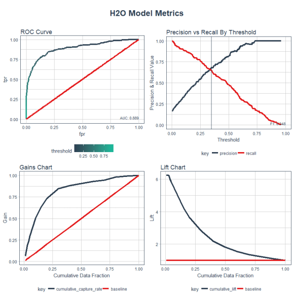 H2O Model Metrics