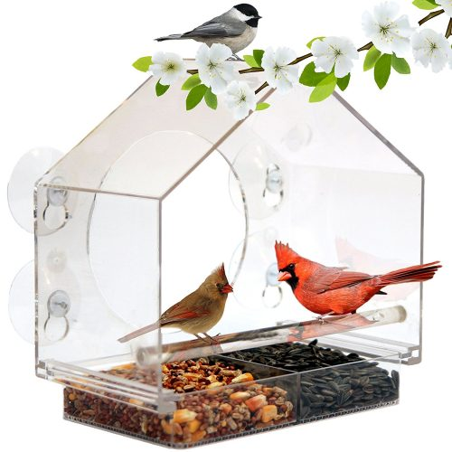 Window Bird Feeder by Nature Anywhere (Size: Large). GIFT EDITION. Includes Free, Easy Removable Tray, 4 Heavy Duty Suction Cups, Drain Holes & Gorgeous Packaging
