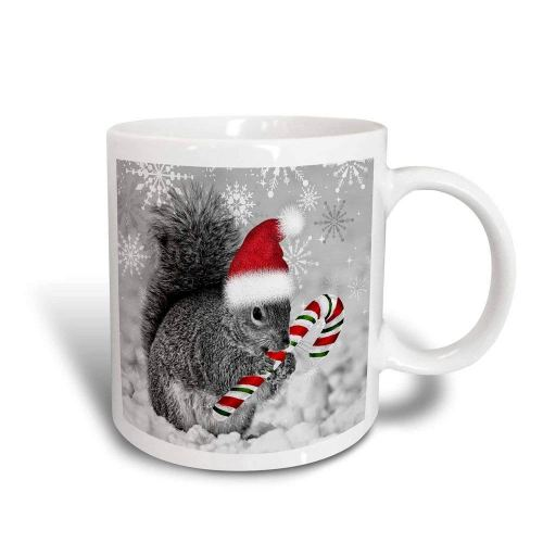 3dRose mug_150177_3 This Cute Christmas Squirrel Has Candy Cane and Santa Hat in The Snow Covered Winter Landscape Magic Transforming Mug, 11-Ounce - Christmas Mugs