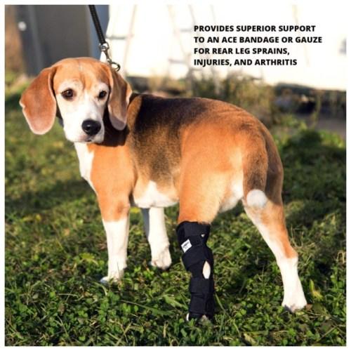JunoPets Dog Canine Rear Leg Knee Brace