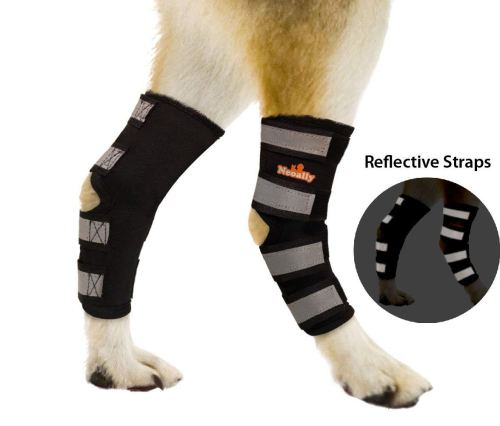 NeoAlly Dog Rear Leg Braces [Pair]