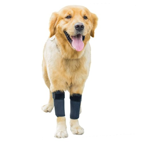 GNIKS Dog Front Leg Wrap Protects Brace Pets Joint Hock Paw