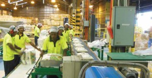 PNG Manufacturers look to the future
