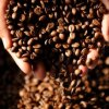 PNG C=coffee beans, Credit; AFP
