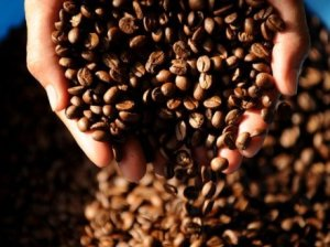 PNG Coffee beans, Credit: AFP