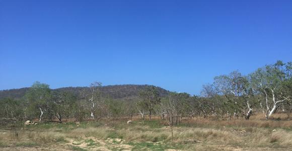 Land in Papua New Guinea Source: BAI