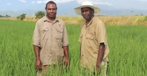 Trukai to expand its Papua New Guinea rice production despite uncertainty, says CEO Worthington-Eyre