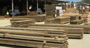 Lae timber processing facility to fill a niche says ACIAR manager
