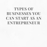 TYPES OF BUSINESSES YOU CAN START AS AN ENTREPRENEUR