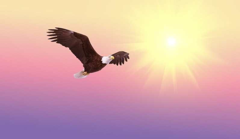 3 Tips that can make your business soar