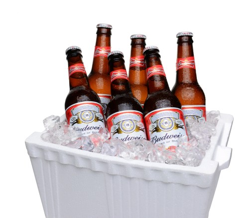 IRVINE CA - JULY 14 2014: Budweiser Bottles in Styrofoam Ice Chest. From Anheuser-Busch InBev Budweiser is one of the top selling domestic beers in the United States.