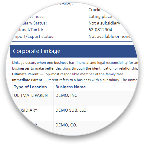 Corporate Linkage Graphic