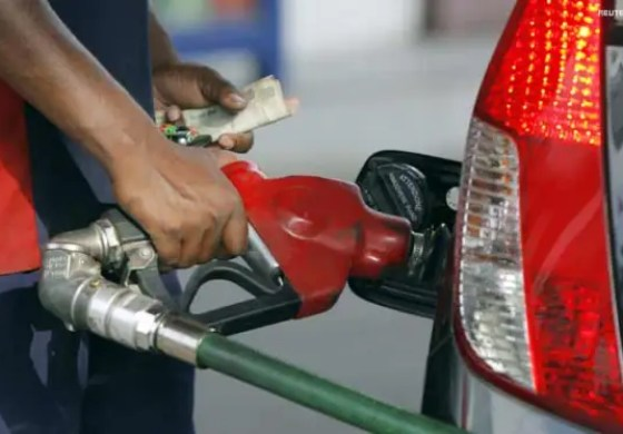 Bio-fuel industry can make Nigerians economically self-reliant -PPPRA