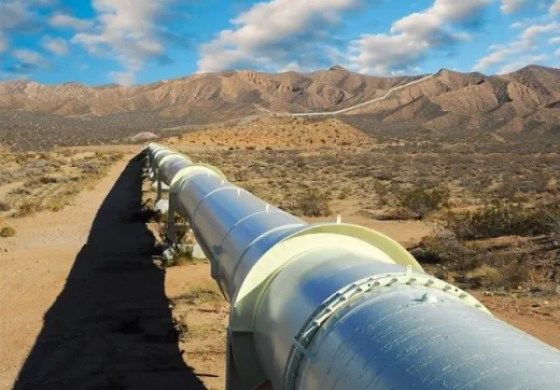 """Amukpe-Escravos pipeline offers option for crude export away from """"troubled"""" Trans Forcados"""