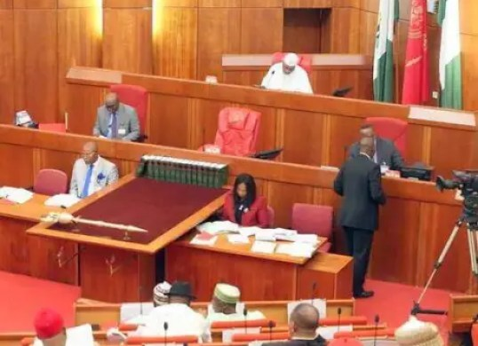 Senate halts concession of P/Harcourt refinery to review Agip, Oando's selection process
