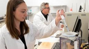 Boulder fabric developer raises $4M to boost research