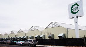 Lincoln Park grow operation fetches $11.5M