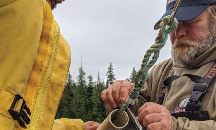 Partnership Launches Seaweed Operation