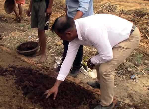 Cheap and good vermicompost can give millions the benefit
