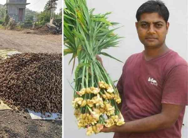 Agriculture success story of IT graduate farmer Devesh Patel earns 1.5 crores by cultivating ginger and turmeric, IT graduate Devesh Patel